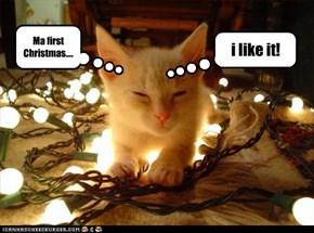 Ma first Christmas....