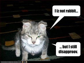 I iz not rabbit...
