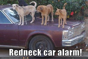 Redneck car alarm!