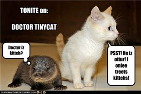 TONITE on:  DOCTOR TINYCAT