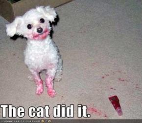The cat did it.