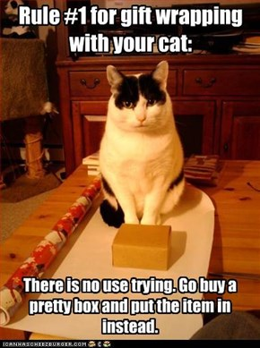 Rule #1 for gift wrapping with your cat: