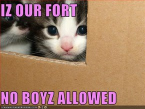 IZ OUR FORT  NO BOYZ ALLOWED