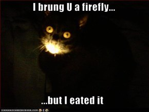 I brung U a firefly...  ...but I eated it