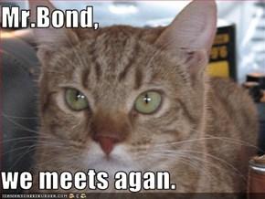 Mr.Bond,  we meets agan.