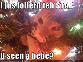 I jus follerd teh STAR  U seen a bebe?