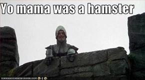 Yo mama was a hamster
