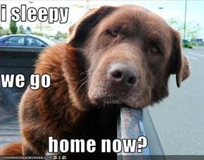 i sleepy we go  home now?