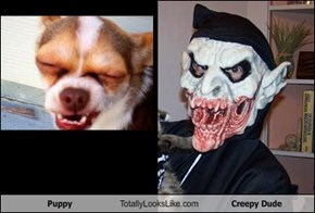 Puppy Totally Looks Like Creepy Dude