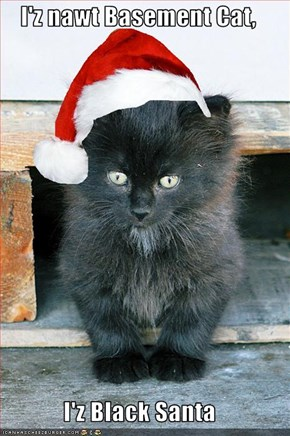 I'z nawt Basement Cat,  I'z Black Santa