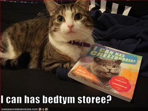 I can has bedtym storee?
