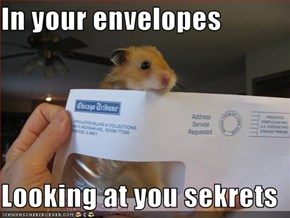 In your envelopes  Looking at you sekrets