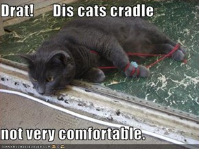 Drat!      Dis cats cradle  not very comfortable.