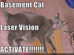 Basement Cat Laser Vision ACTIVATE!!!!!!!