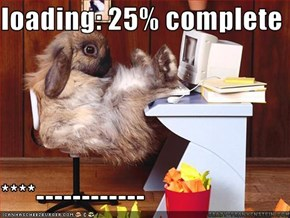 loading: 25% complete  ****------------