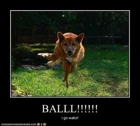 BALLL!!!!!!