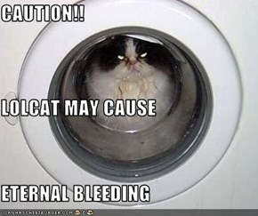 CAUTION!! LOLCAT MAY CAUSE  ETERNAL BLEEDING