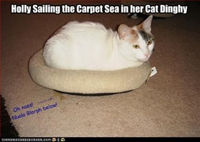 Holly sails the Carpet Sea in her Cat Dinghy