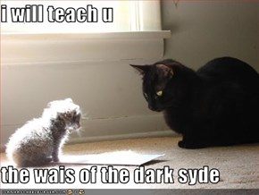 i will teach u  the wais of the dark syde