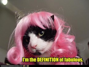 I'm the DEFINITION of fabulous.