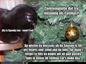Comtemplatin dat tru meaning ob  Catmus!!