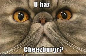 U haz     Cheezburgr?