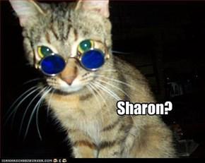 Sharon?