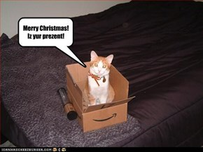 Merry Christmas! Iz yur prezent!