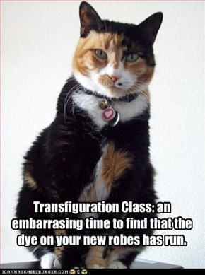 Transfiguration Class: an  embarrasing time to find that the dye on your new robes has run.