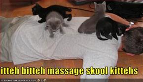 itteh bitteh massage skool kittehs