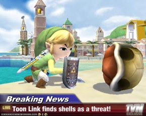 Breaking News - Toon Link finds shells as a threat!