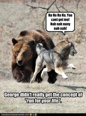 "George didn't really get the concept of ""run for your life""."