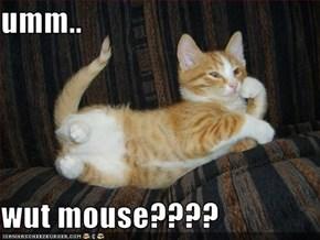 umm..  wut mouse????