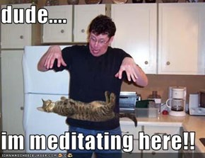 dude....  im meditating here!!