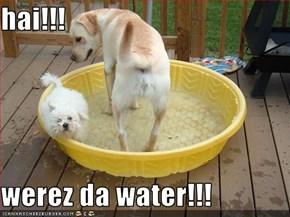 hai!!!  werez da water!!!