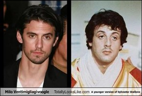 Milo Ventimigliagivoogle Totally Looks Like A younger version of Sylvester Stallone
