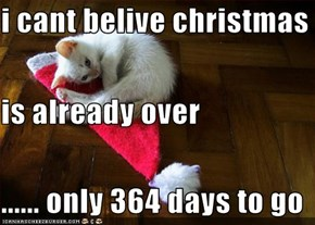 i cant belive christmas  is already over ...... only 364 days to go