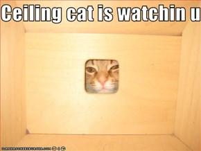 Ceiling cat is watchin u