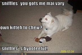 *sniffles* you gots me mai vary own kitteh to chew? *sniffles* s'byooteeful!