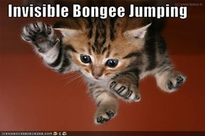 Invisible Bongee Jumping