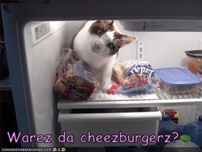 Warez da cheezburgerz?