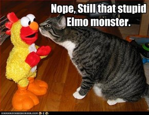 Nope, Still that stupid Elmo monster.