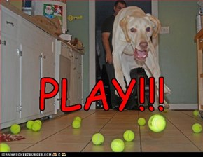 PLAY!!!