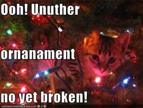 Ooh! Unuther ornanament no yet broken!