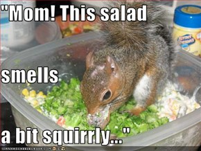 """""""Mom! This salad smells a bit squirrly..."""""""