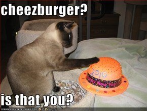 cheezburger?  is that you?
