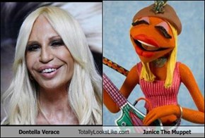 Dontella Verace Totally Looks Like Janice The Muppet