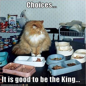 Choices...  It is good to be the King...