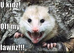 U kidz! Off my lawnz!!!