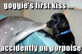 goggie's first kiss ...  accidently on porpoise